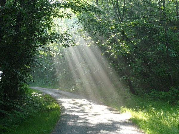 Chemin et lumière - aller mieux